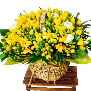 봄의향기(계절상품)
